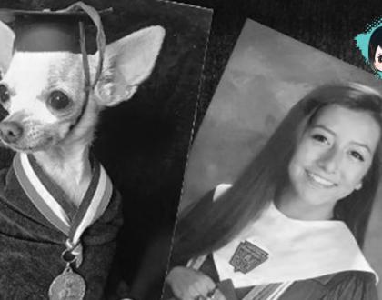 Filha substitui secretamente as fotos da família por imagens maravilhosas da cachorrinha